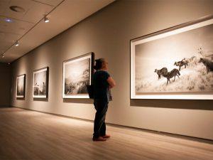 """""""Dioramas"""" (1976-2012), Hiroshi Sugimoto"""